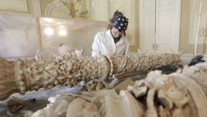 Bosch содействует модернизации котельных по всей России.